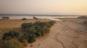 Chikwenya, Wilderness Safari, Mana Pools, Zimbabwe